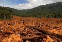 √ Degradasi Lingkungan : Pengertian, Penyebab, Dampak dan Bentuk Pencemarannya
