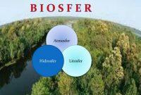 √ Biosfer : Pengertian, Macam, Komponen, Ciri dan Contohnya