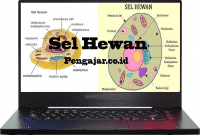 Sel-Hewan