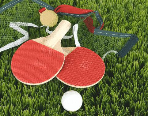 Alat Tenis Meja